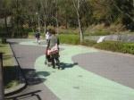 とべ動物園 遊歩道(松山)